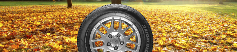 Free Tire Quote