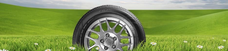 Wheel Alignments | Plaza Tire Service